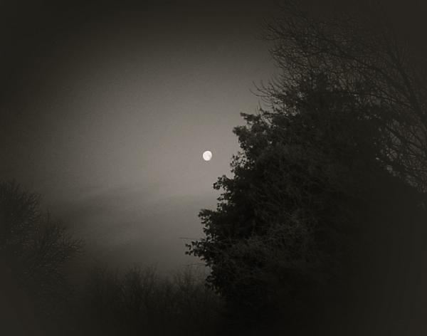 Moon in B&W by Serena Matthews