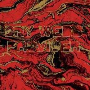 Bry-Webb-Provider-Cover