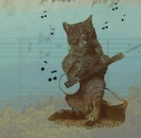 Common Folk Music Banjo Cat