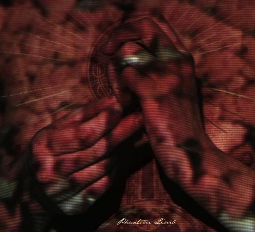 Phantom_Limb-cover