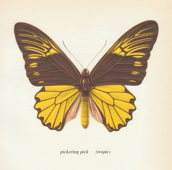 Pickering Pick Tropic Cover